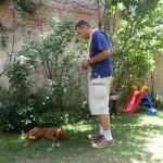 Dresaj Canin 302