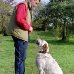 Dresaj Canin 13