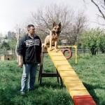 Dresaj Canin 16