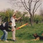Dresaj Canin 22