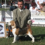 CACIB Bucuresti 2009