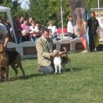 CACIB 2006 Bucuresti 08