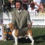 CACIB 2006 Bucuresti 10