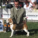 CACIB 2006 Bucuresti 11