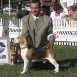 CACIB 2006 Bucuresti 12