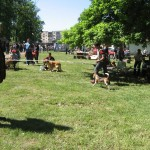 CACIB 2008 Timisoara 06